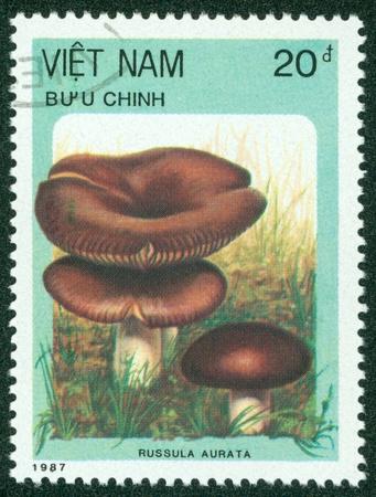 VIETNAM - CIRCA 1987  A stamp printed in VIETNAM shows mushrooms, series, circa 1987 Stock Photo - 16233176