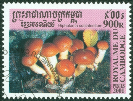 CAMBODIA - CIRCA 2001  A stamp printed in Cambodia shows the Brick Cap Mushroom, Hypholoma sublateritium, circa 2001