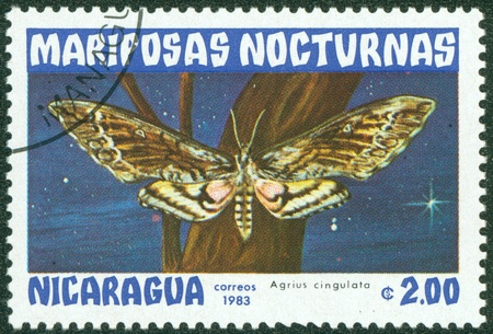 NICARAGUA - CIRCA 1983  A Stamp printed in NICARAGUA shows image of a agrius cingulata butterfly, circa 1983