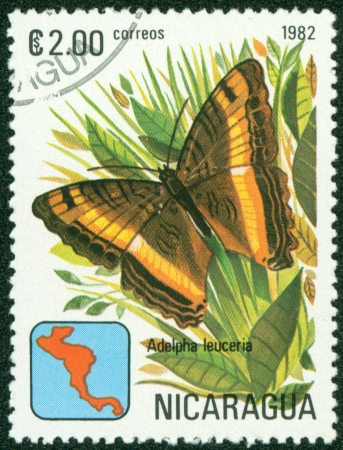 NICARAGUA - CIRCA 1982  A Stamp printed in NICARAGUA shows image of a brush-footed butterflies  adelpha leuceria , circa 1982