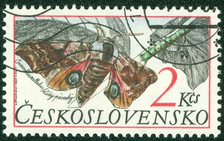 CZECHOSLOVAKIA - CIRCA 1987  A stamp printed in Czechoslovakia showing Eyed hawk moth circa 1987 Editorial