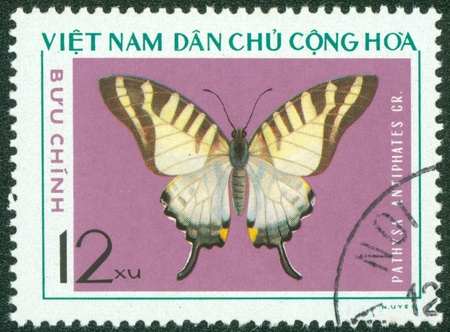 VIETNAM - CIRCA 1976  A stamp printed in Vietnam shows Pathysa antiphates, series devoted to butterflies, circa 1976 Stock Photo - 16233221