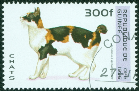 GUINEA - CIRCA 1996  A stamp printed in Guinea shows Japanese Cat, circa 1996 Stock Photo - 16233237