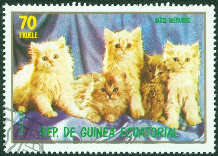 EQUATORIAL GUINEA - CIRCA 1974  stamp printed by Equatorial Guinea, shows cat, kitten, kitty circa 1974 Stock Photo - 16233265