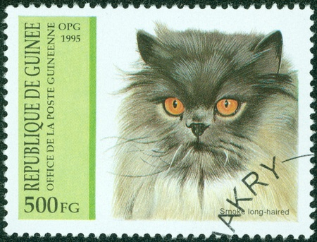 GUINEA - CIRCA 1995  stamp printed by Guinea, shows Smoke long-haired, circa 1995