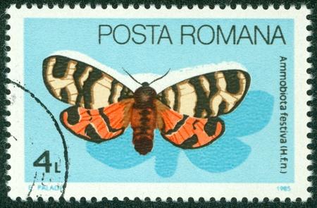 ROMANIA - CIRCA 1985  A stamp printed in Romania showing Ammobiota Festiva butterfly, circa 1985 Stock Photo - 16266234