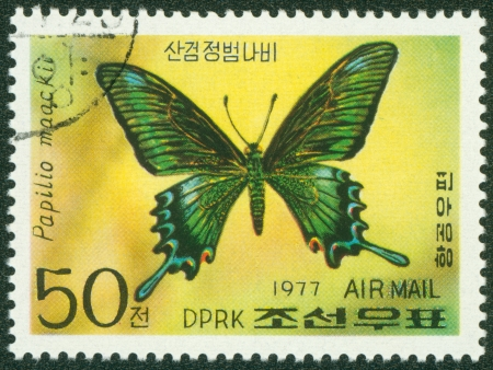 NORTH KOREA - CIRCA 1977  A stamp printed in North Korea, shows butterfly , circa 1977