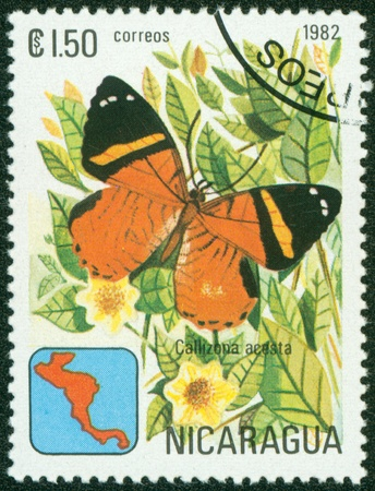 NICARAGUA - CIRCA 1982  A Stamp printed in NICARAGUA shows image of a butterfly Consul hippona, circa 1982