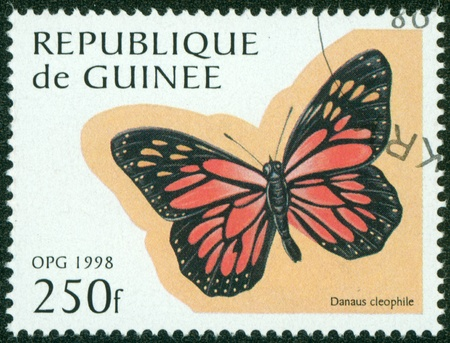 GUINEE - CIRCA 1998  stamp printed by GUINEE, shows butterfly, circa 1998