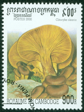 CAMBODIA - CIRCA 2000  A stamp printed in Cambodia shows Mushroom, circa 2000