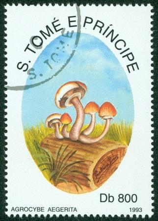 principe: S Tom� y Pr�ncipe - alrededor de 1993 Un sello impreso en S Tom� setas E muestra Principe, circa 1993 Editorial
