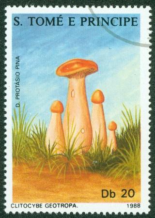 principe: S Tomé y Príncipe - alrededor de 1993 Un sello impreso en S Tomé setas E muestra Principe, circa 1993 Editorial