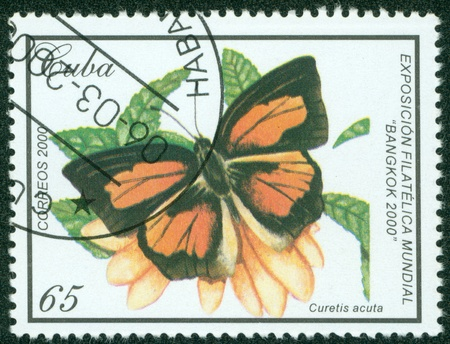 CUBA - CIRCA 2000  A Stamp printed in CUBA shows butterfly, circa 2000