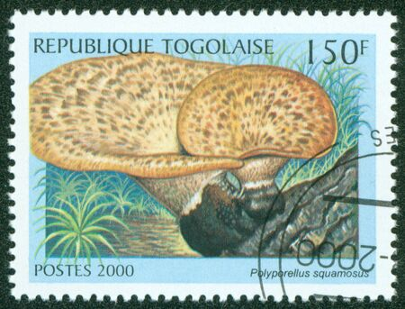 TOGO - CIRCA 2000  A stamp printed in Togo shows Mushroom,circa 2000  Stock Photo - 16302142