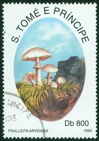 principe: S Tom� y Pr�ncipe - alrededor de 1993 Un sello impreso en S Tom� setas E muestra Principe, circa 1993 Foto de archivo