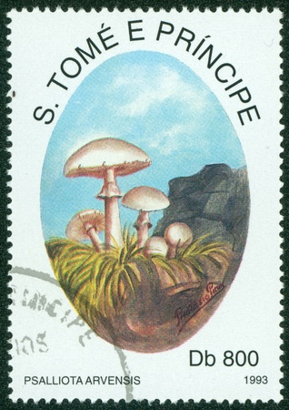 S TOME E PRINCIPE - CIRCA 1993  A stamp printed in S Tome E Principe shows mushrooms, circa 1993 Stock Photo - 16302131