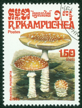 CAMBODIA - CIRCA 1985  A stamp printed in Cambodia shows Mushroom, circa 1985  Stock Photo - 16302121