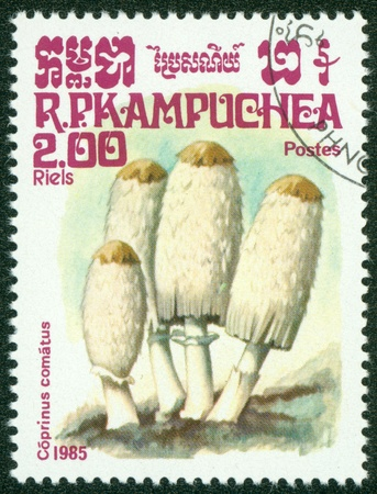 CAMBODIA - CIRCA 1985  A stamp printed in Cambodia shows Mushroom, circa 1985  Stock Photo - 16302147
