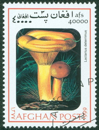 AFGHANISTAN - CIRCA 1999  A Stamp printed in AFGHANISTAN shows mushroom, circa 1999 Stock Photo - 16302155
