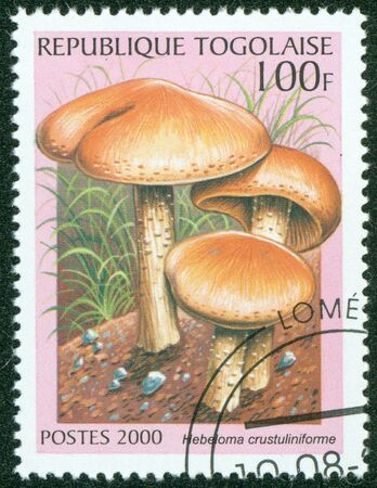 TOGO - CIRCA 2000  A stamp printed in Togo shows Mushroom,circa 2000 Stock Photo - 16302129