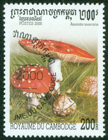 CAMBODIA - CIRCA 2000  A stamp printed in Cambodia shows Mushroom, circa 2000  photo