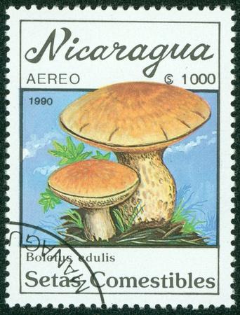 NICARAGUA - CIRCA 1990  A stamp printed in Nicaragua shows mushroom, circa 1990  Stock Photo - 16302153