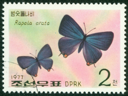 NORTH KOREA - CIRCA 1977  A stamp printed in North Korea, shows butterfly , circa 1977 Stock Photo - 16302124