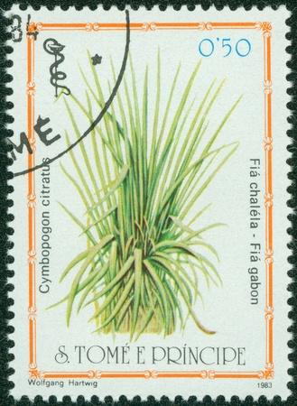 miracle leaf: S TOME E PRINCIPE -CIRCA 1983  A post stamp printed in S Tome e Principe shows herb cymbopogon citratus, circa 1983 Editorial