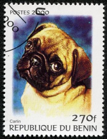 carlin: BENIN - CIRCA 2000  A stamp printed in BENIN,shows a dog, circa 2000