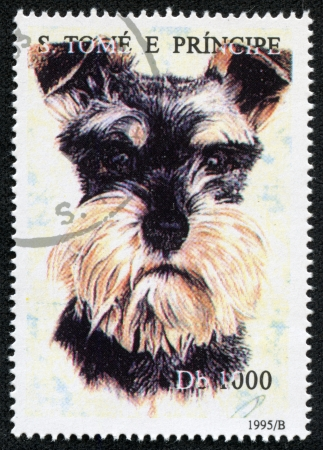 S  TOME E PRINCIPE - CIRCA 1995  A stamp printed in S  Tome e Principe showing Miniature Schnauser dog, circa 1995 photo