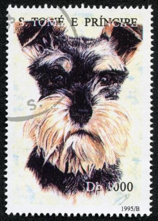 S  TOME E PRINCIPE - CIRCA 1995  A stamp printed in S  Tome e Principe showing Miniature Schnauser dog, circa 1995 Stock Photo - 17200088