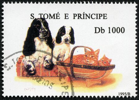 S  TOME E PRINCIPE - CIRCA 1995  A stamp printed in S  Tome e Principe showing Cockerspaniel, circa 1995 Stock Photo - 17199329