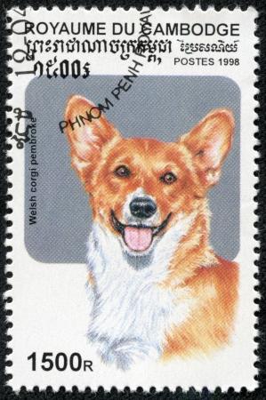 CAMBODIA - CIRCA 1998  A stamp printed in CAMBODIA,shows a dog, circa 1998 Stok Fotoğraf