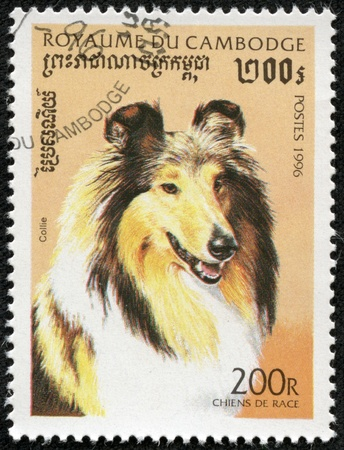 CAMBODIA - CIRCA 1996  A stamp printed in Cambodia shows Dog, circa 1996 photo