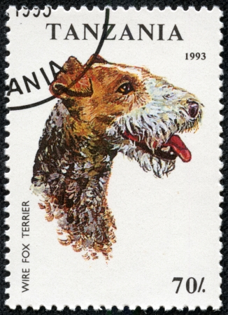 TANZANIA - CIRCA 1993  A stamp printed in Tanzania shows Wire Fox Terrier, circa 1993 Stock Photo - 17199199