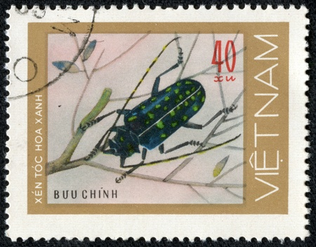 VIETNAM - CIRCA 1981  stamp printed in VIETNAM, shows mottled blue green beetles woodcutters, 40 coins, about 1981 Stock Photo - 17199242