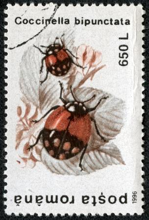 ROMANIA - CIRCA 1996  stamp printed by Romania, shows Coccinella bipunctata, circa 1996 Stock Photo - 17199155