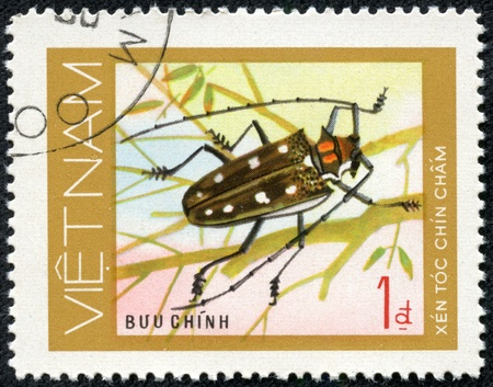 VIETNAM - CIRCA 1981  A stamp printed in VIETNAM, shows animal insect long horn beetle bug, 1 coins, circa 1981 Stock Photo - 17199266