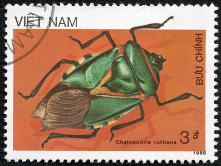 VIETNAM - CIRCA 1986  A stamp printed in Vietnam shows Chalcocoris rutilans, series Insects, circa 1986 Stock Photo - 17199336