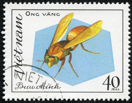 aculeata: VIETNAM - CIRCA 1982  A stamp printed in Viet nam shows a insect, circa 1982