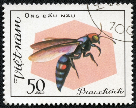 aculeata: VIETNAM - CIRCA 1982  A stamp printed in Viet nam shows a insect, circa 1982  Stock Photo