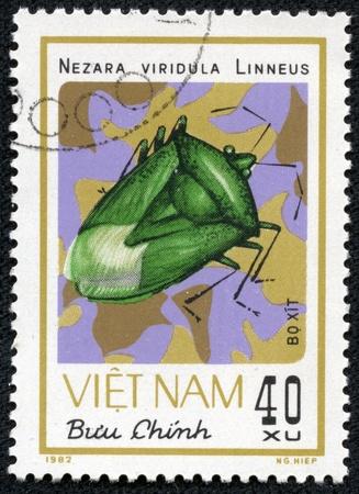 VIETNAM - CIRCA 1982  A stamp printed in VIETNAM shows nezara viridula linneus, circa 1982 Stock Photo - 17199211