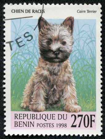 BENIN - CIRCA 1998  A stamp printed in BENIN,shows a dog, circa 1998