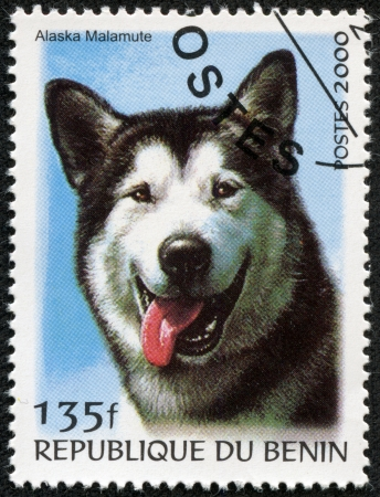 BENIN - CIRCA 2000  A stamp printed in BENIN,shows a dog, circa 2000