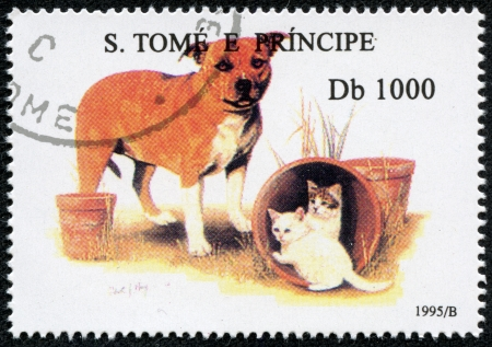 S  TOME E PRINCIPE - CIRCA 1995  A stamp printed in S  Tome e Principe showing dog and cats, circa 1995 Stock Photo - 17261706