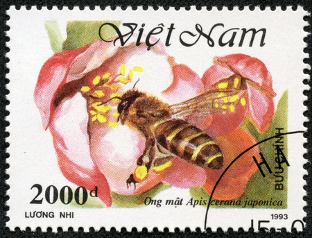 VIETNAM - CIRCA 1993  A stamp printed in Vietnam shows worker bee collecting honey,, circa 1993