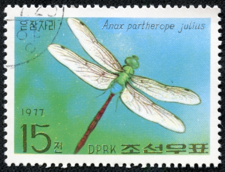 KOREA - CIRCA 1977  A stamp printed in Korea, shows dragonfly, circa 1977 photo