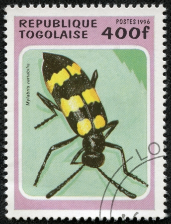 TOGO - CIRCA 1996  A stamp printed in Togolese Republic shows beetle , circa 1996 photo