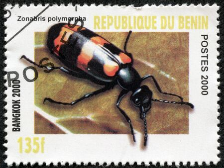 BENIN - CIRCA 2000  A stamp printed in BENIN shows insect, circa 2000 Stock Photo - 17249854