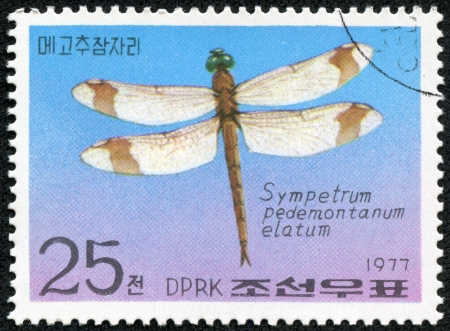 KOREA - CIRCA 1977  A stamp printed in Korea, shows dragonfly, circa 1977 Stock Photo